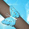 Turquoise et chocolat Papillons