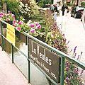 Veules-les-Roses, fleuve (76)