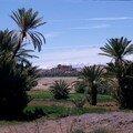8c.Paysage et faune du Maroc