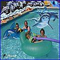 dalibot piscine