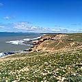Tizi n'trail - 2ème étape - champs d'arganiers et belles falaises