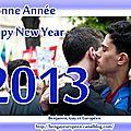 Bonne année 2013 ! happy new year 2013!