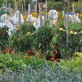 jardins familiaux 0140009