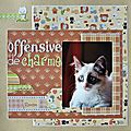 Offensive-charme1