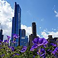 Chicago jour 3 - day 3