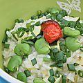 Parition verte pour un risotto aux fèves, à la courgette et à la sauge