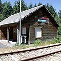 Gare bois Bugeat-Viam (Corrèze - 19)