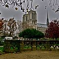 Notre-Dame depuis de square Viviani.