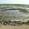 Nusa Lembo