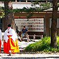 Tokyo - Sanctuaire Meiji