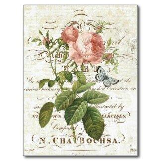 carte_postale_rose_botanique_francaise_vintage-r23df83f940ab4330ad9c80556f0bf32c_vgbaq_8byvr_324