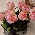 tulipesroses