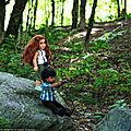 En forêt... et infos sur les droits d'auteur à ne pas négliger
