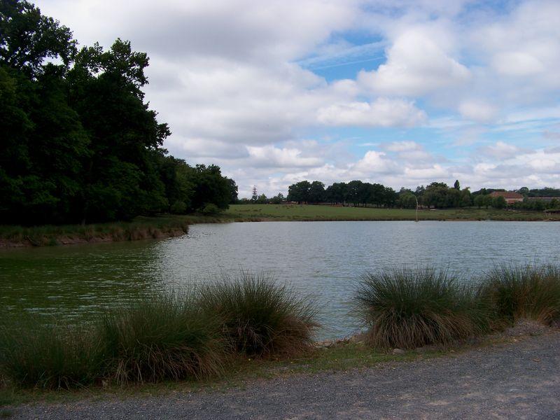 Parc Sainte-Croix le 12 juin 2011 034
