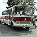 DSC08218 (Large)