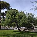 Toulon - le parc <b>Alexandre</b> <b>1er</b>
