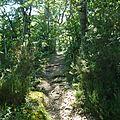 Chemin de randonnée de la moulinquié (facile à pied, possible à vtt, mais non recommandé pour les chevaux)