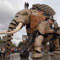 Le grand eléphant qui...