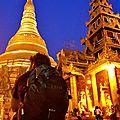 Paya Shwedagon by night - Yangon