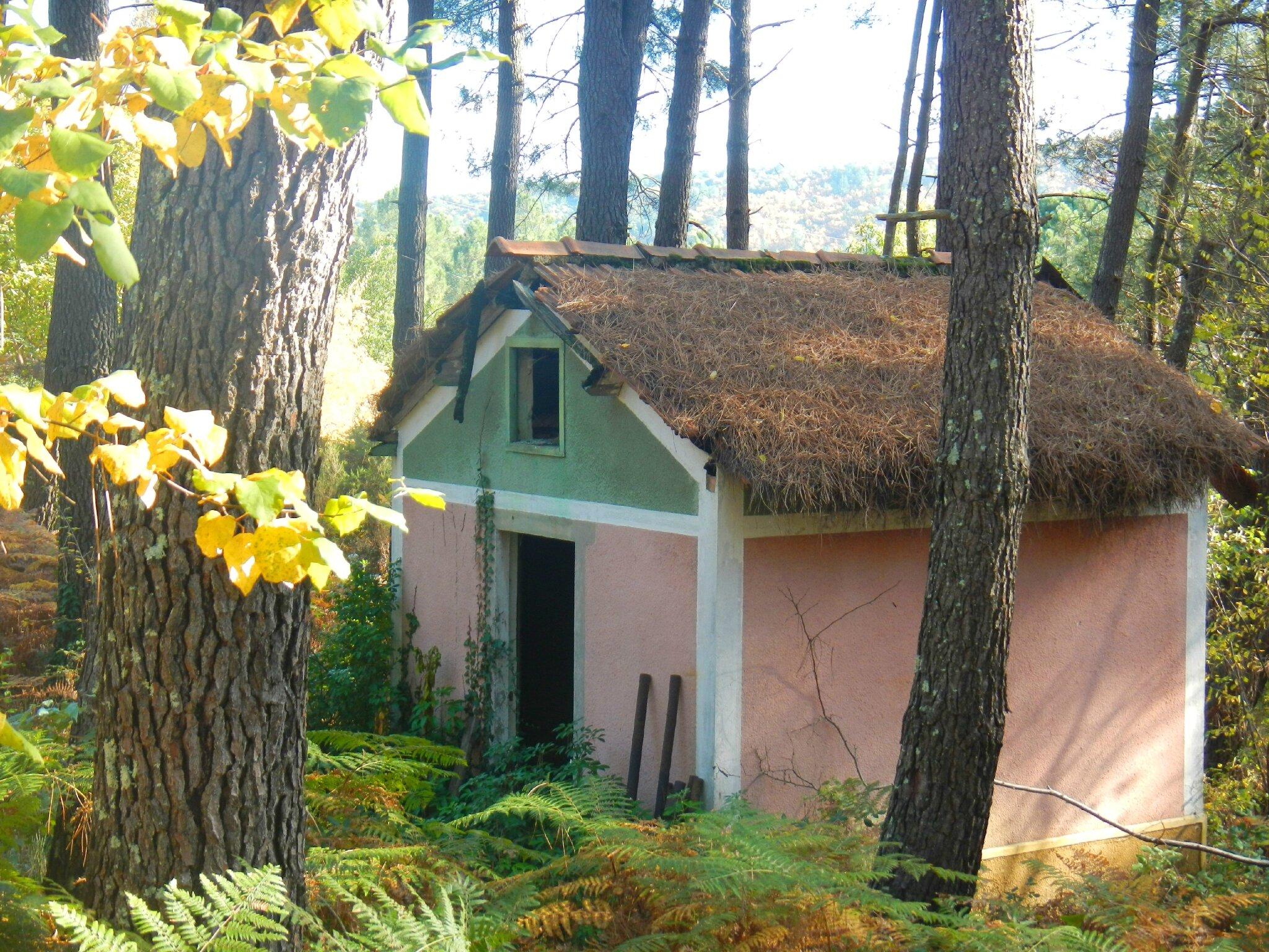 cabane rose aux aiguilles de pin