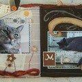 Histoire 2 chats, suite