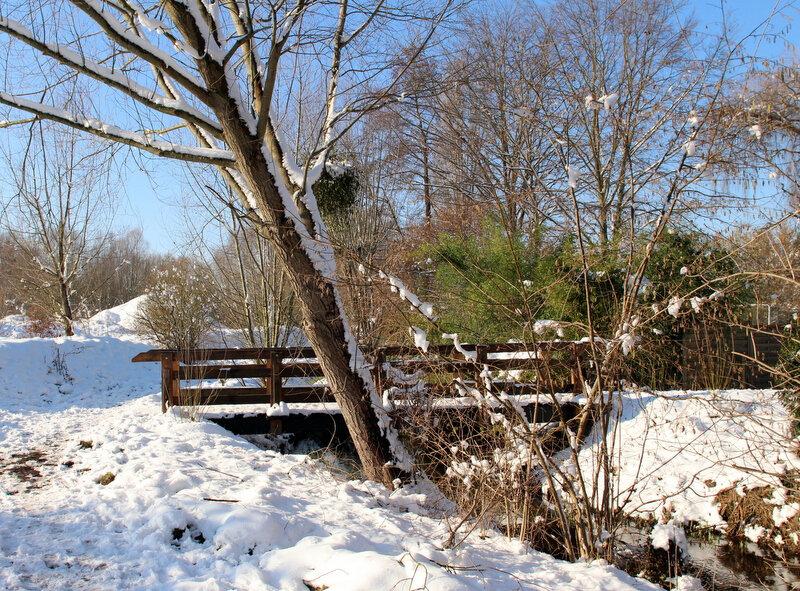 Lamorlaye sous la neige