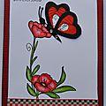 Papillon iris folding