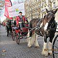 Défilé dans paris - salon du cheval 2012 -