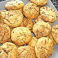 Ronde interblog n°36 : cookies (beurre de cacahuète) de la baby-sitter des scavo - desperate housewifes