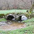 IMG_0211a