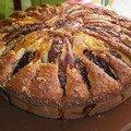 Gâteau aux nectarines de leonine, et plus si affinités