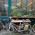 vélo cour végétale_7808