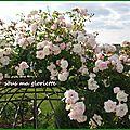 L'histoire de ma <b>gloriette</b>