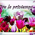 ZENOPIA/ Défi listes : Les <b>petits</b> <b>plaisirs</b> du printemps