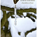Chandelle en hiver (candle in winter)
