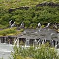 Vacances islandaises ... les chutes d'eau.