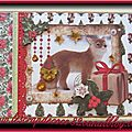Carte 3d renards
