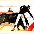 No hay billetes pour <b>El</b> <b>Rafi</b> lors de sa Fiesta Campera
