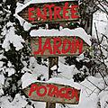 Notre <b>jardin</b> forêt sous la neige