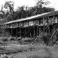 Longhouse d'une tribu Iban