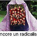islam humour radicalisation
