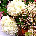 Floraison printanière...
