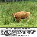 Revisitons la France : le Limousin ! (87)