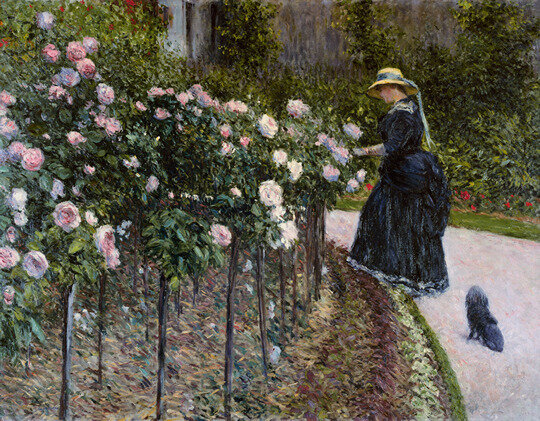 Les roses_Gustave Caillebotte_1886