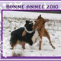<b>Bonne</b> Année 2010