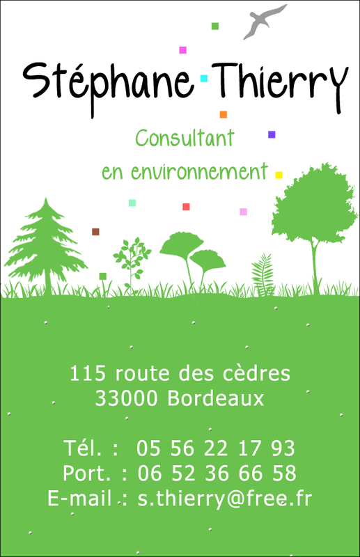 Carte de visite CONSULTANT EN ENVIRONNEMENT