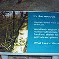 Weston park museum de sheffield