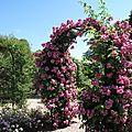 L'Hay les Roses 2010 114