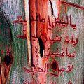 graffiti_mab_vertic_insan