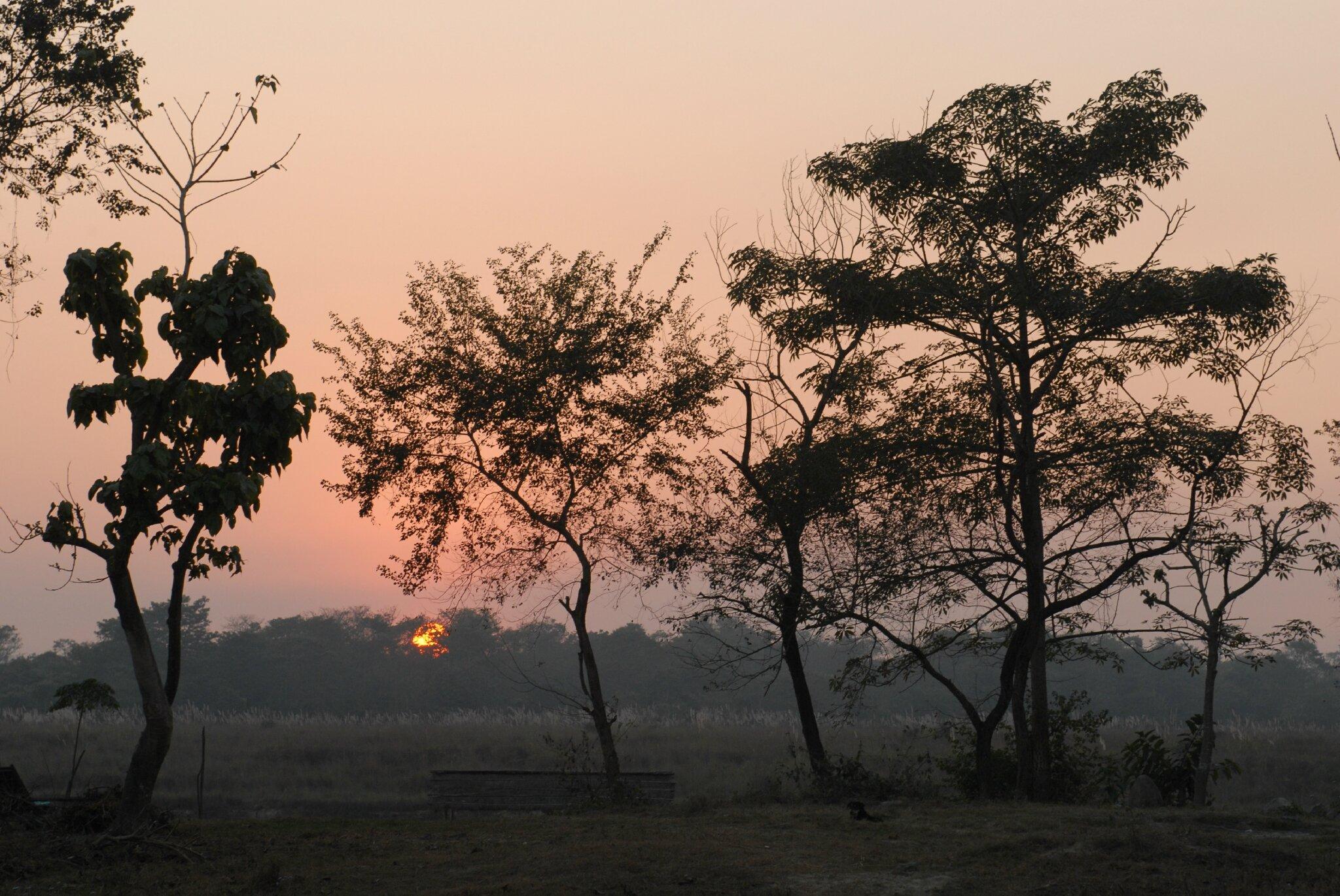 coucher de soleil à Chitwan